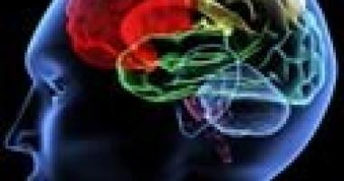 Notre cerveau sous hypnose